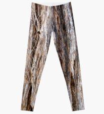 Eucalypt Bark Leggings