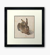 Albrecht Dürer - Young Hare 1502 Framed Print