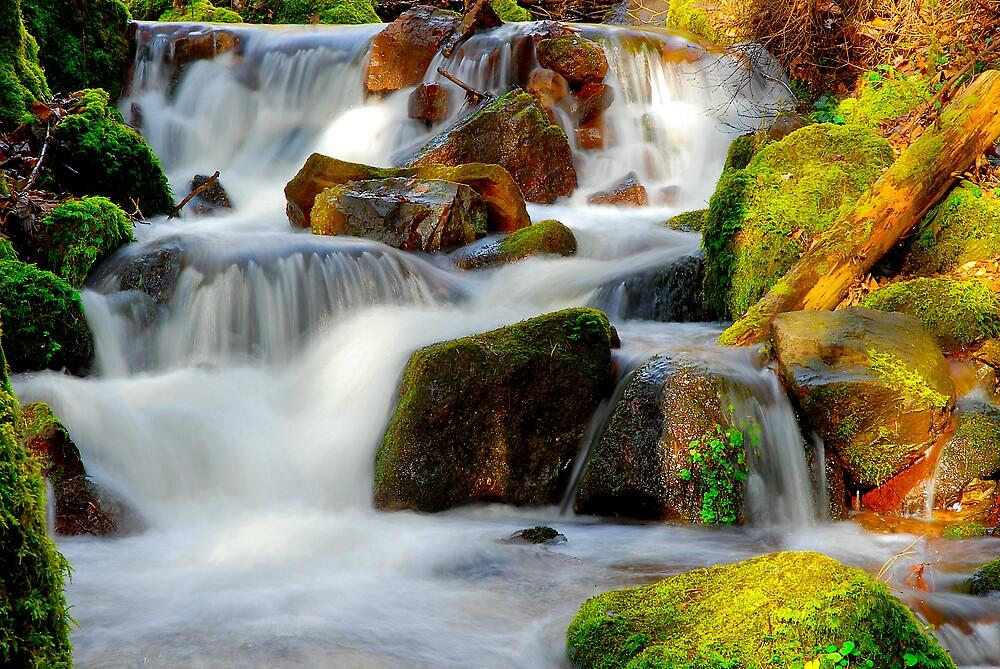 waterfalls in D# by Philippe Sainte-Laudy