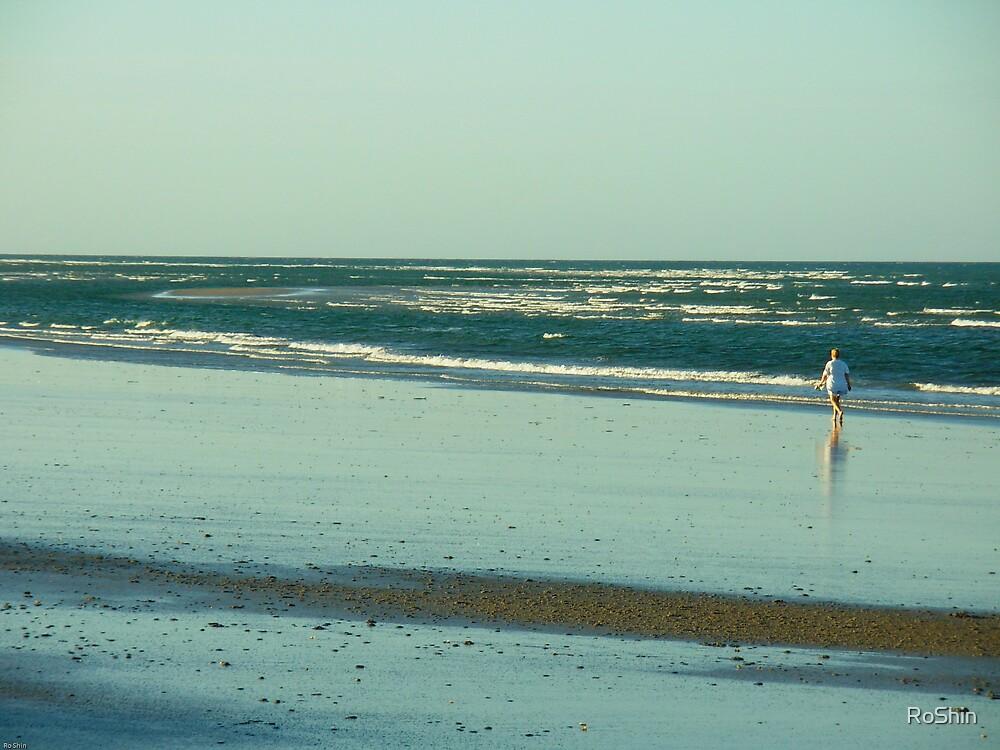 Beach Walker by RoShin