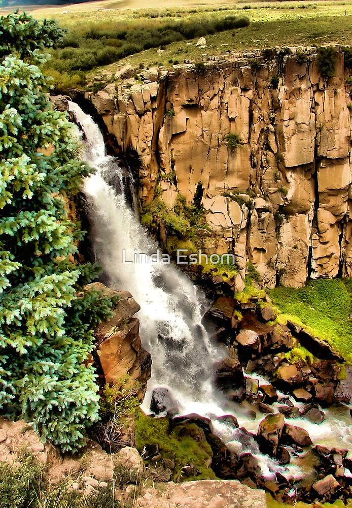 North Clear Creek Falls by Linda Eshom