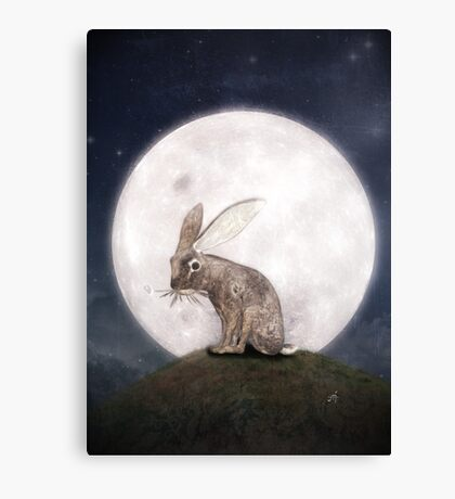Night Rabbit Canvas Print