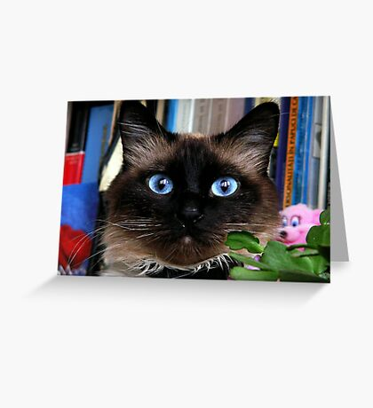PISI Greeting Card