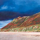 Llangennith acrylic painting by Nathan Howell