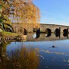 Bidford Bridge in Autumn by ArtStudioV