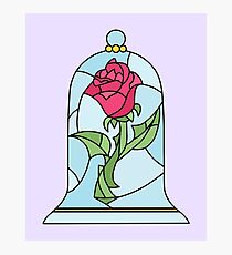 BEAUTY AND THE BEAST ROSE Photographic Print