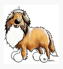 Fluffy Rough Collie Photographic Print