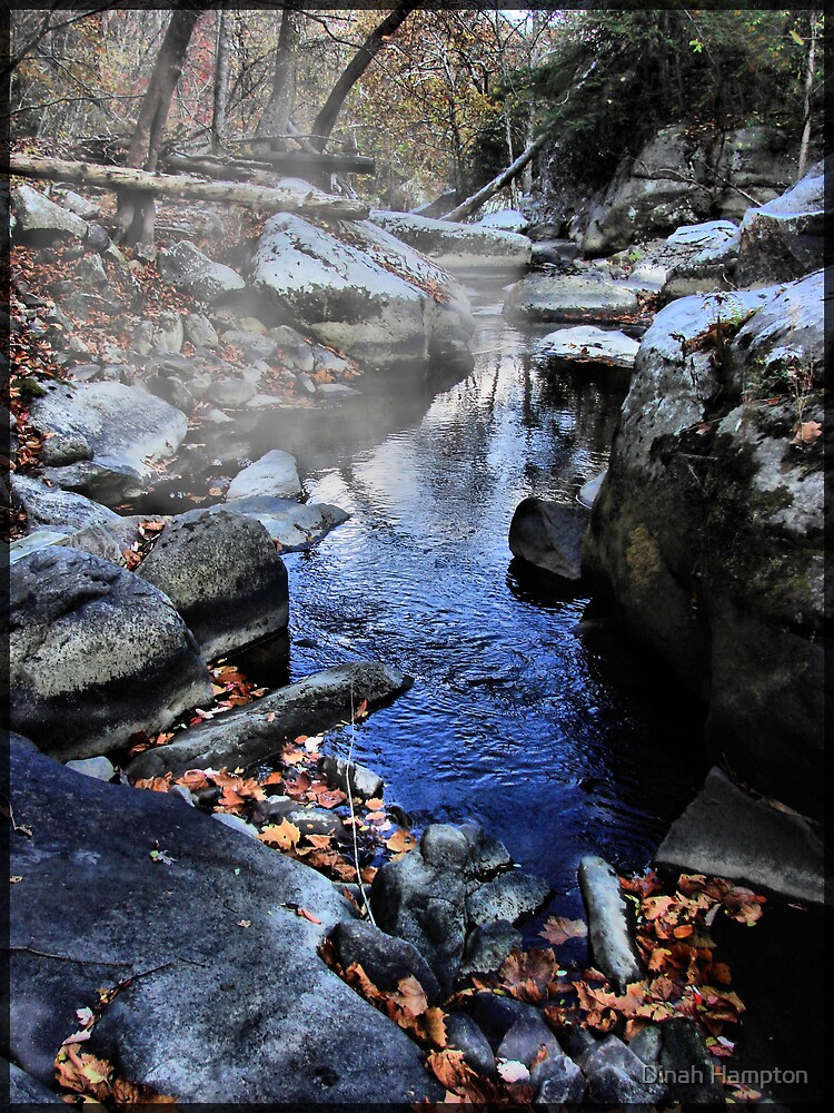 Misty Creek by Dinah Hampton