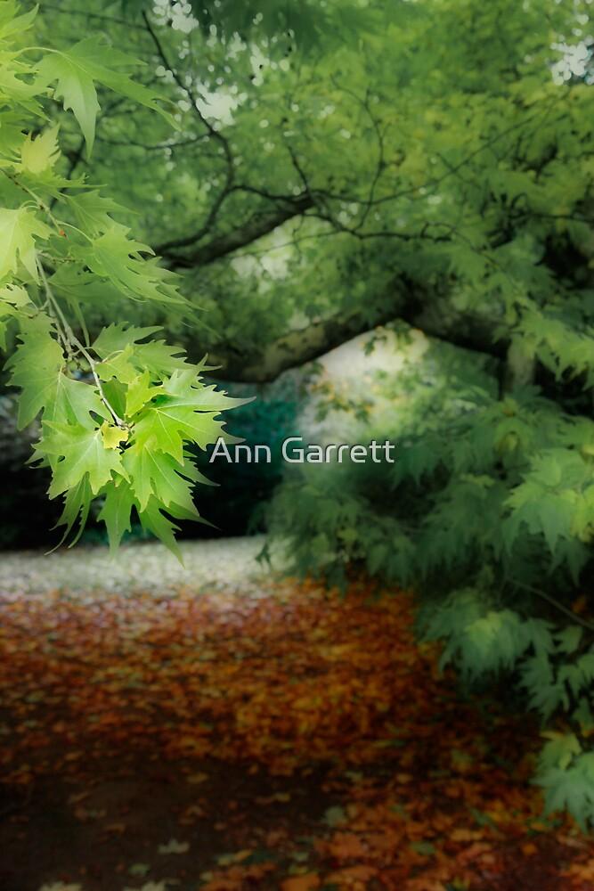 Golden Leaf by Ann Garrett