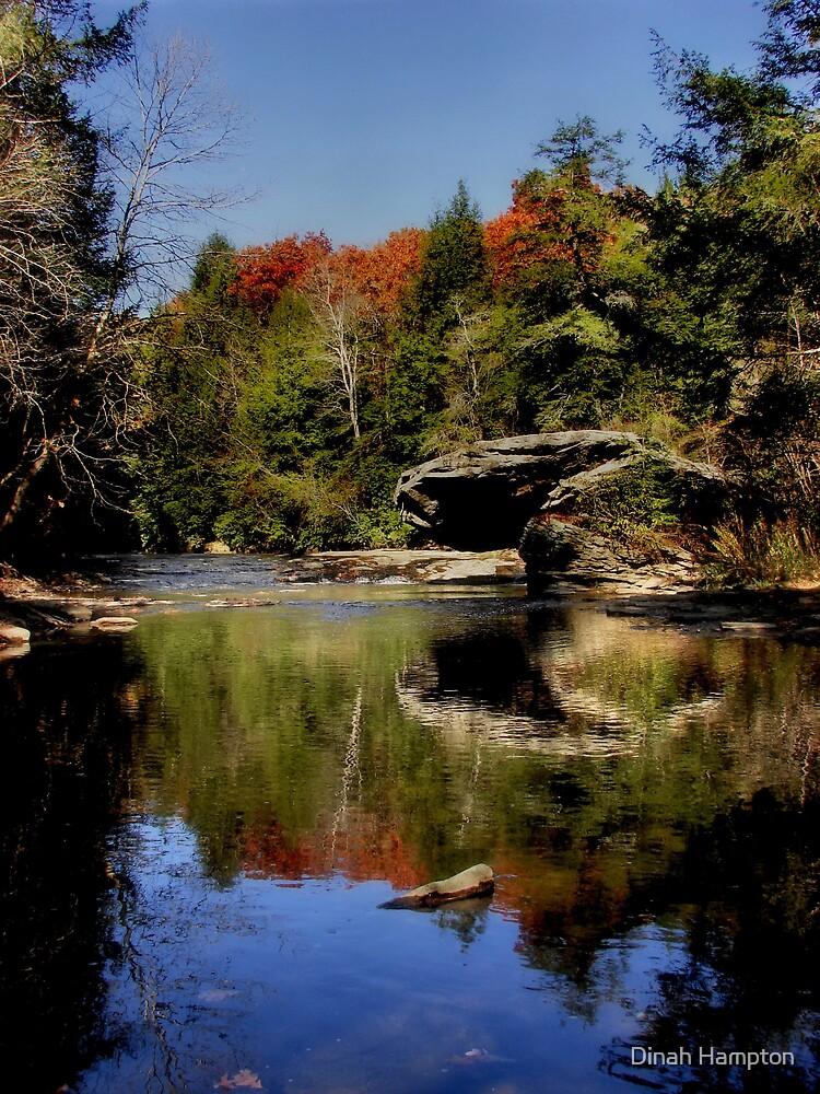 Guest River Gorge#2 by Dinah Hampton