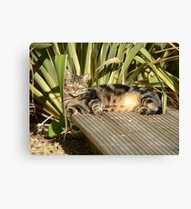 Relaxation .... Canvas Print