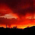Desert Rain at Sunset by Daniel J. McCauley IV