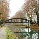 Fall in Garonne Lateral Canal by 29Breizh33