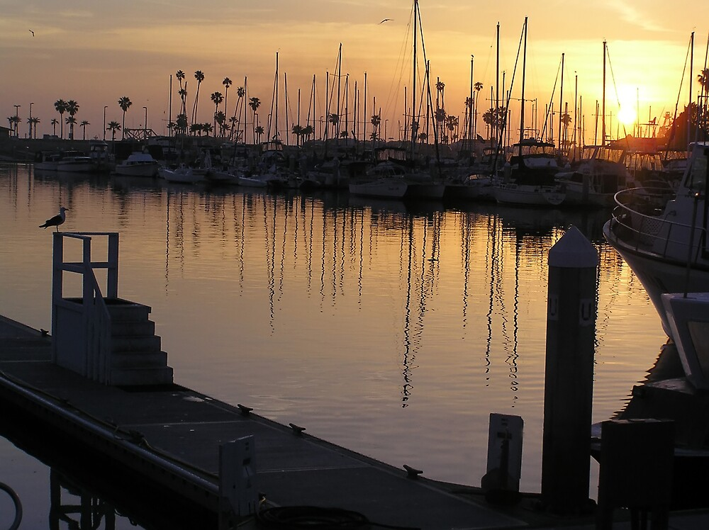 Sunset at the Harbor by Chuck Cannova