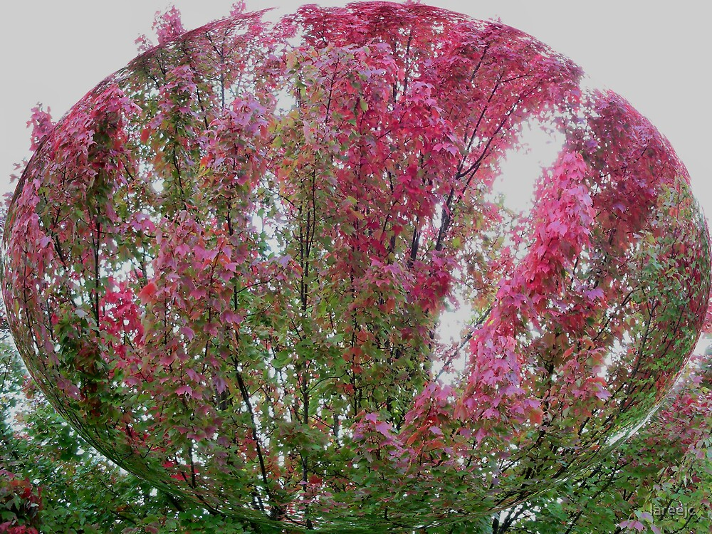 Tree of pink by lareejc