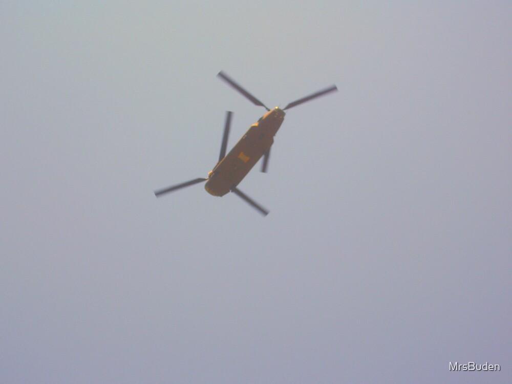Flying by MrsBuden