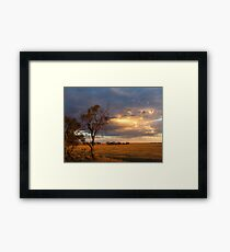 Rust coloured Wheat Framed Print