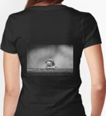 Nuthatch in midair.... Womens Fitted T-Shirt
