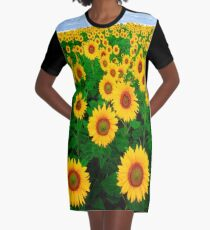 Sunflowers Graphic T-Shirt Dress