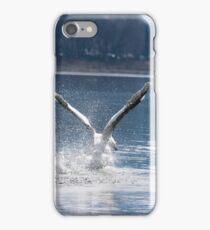 Swan on lake Como iPhone Case/Skin