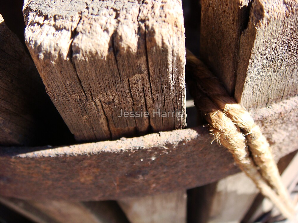 Rope by Jessie Harris