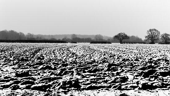 Norfolk Winter #2 by David Hawkins-Weeks