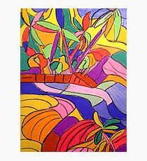 Currumbin Slide The Cougals Waterfalls [pastel] Photographic Print
