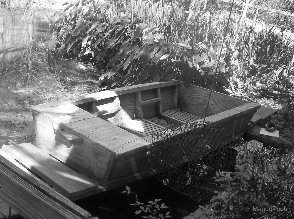 Swamp Boat by MandyPooh