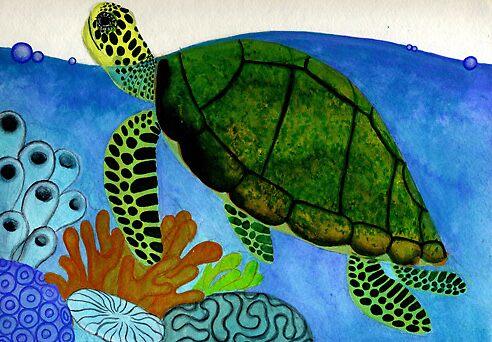 sea turtle by Amanda Suutari