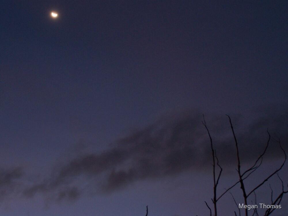 Moon by Megan Thomas