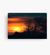 Sunset at Nature Landscape Scene Canvas Print