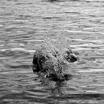 Splash by galziariart