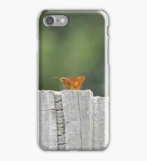Fence Sitter... iPhone Case/Skin