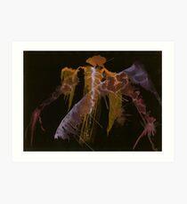 Webwork - 006 - Standard Bearer Art Print