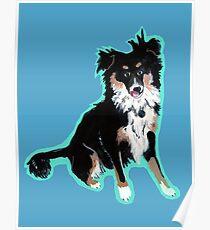 Mini Shepard Puppy Poster