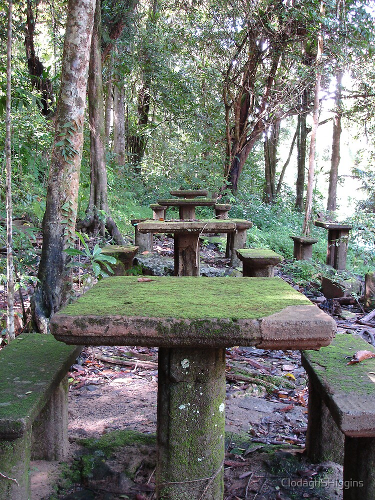 Picnic Tables at Paronella Park Queensland by ClodaghSHiggins