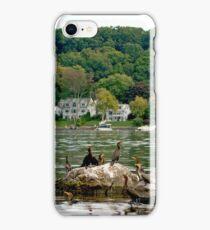 Cormorants Enjoying the Lake iPhone Case/Skin
