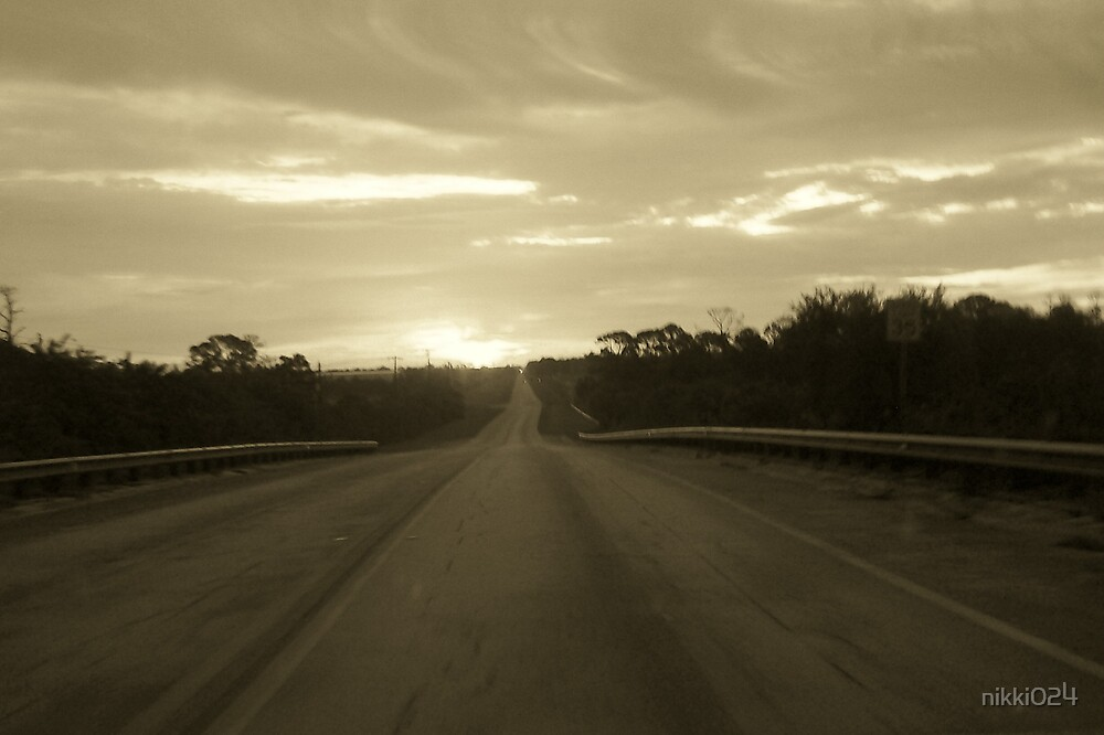 LONG ROAD HOME by nikki024