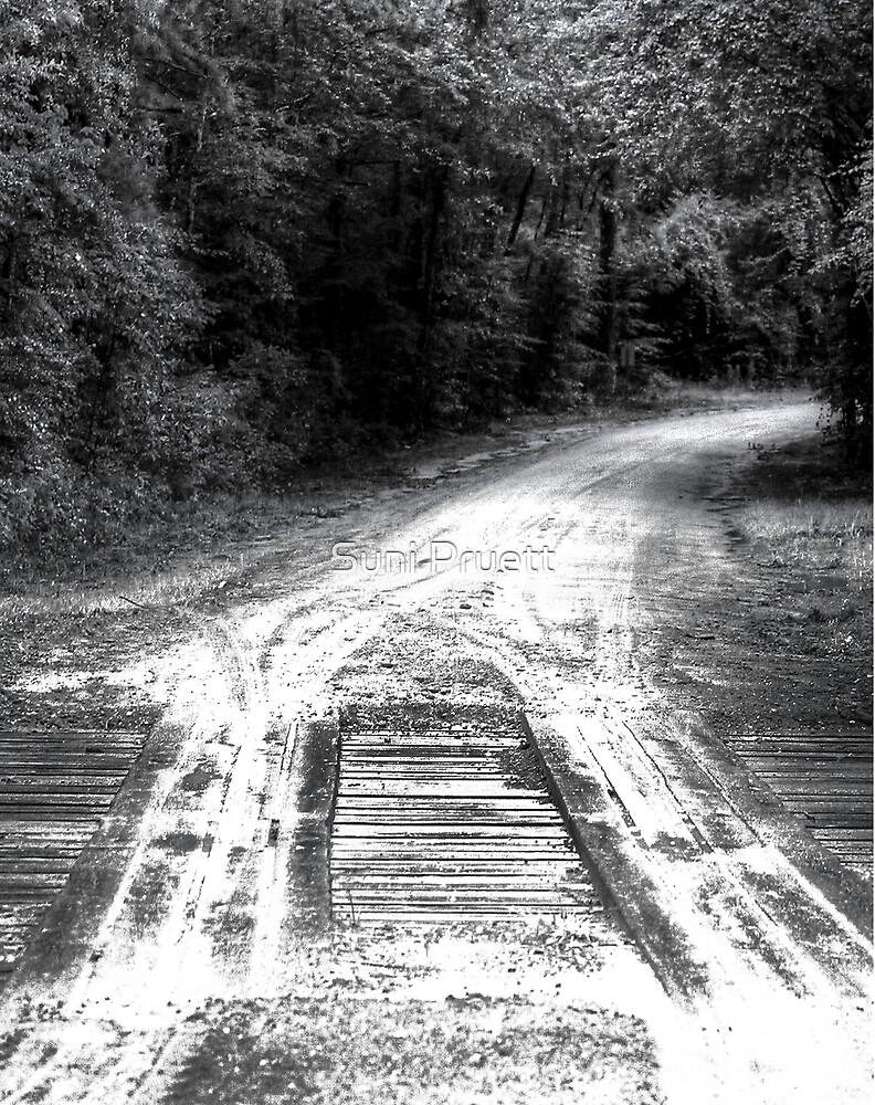 The Road Home - Experiment by Suni Pruett