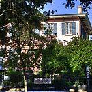 Savannah Home by photorolandi