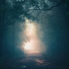 Into the Light II by MiVisions