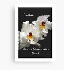 Gratitude Turns A Stranger Into A Friend Canvas Print