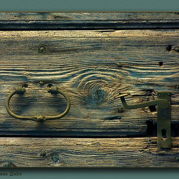 door by hanseder