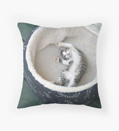 Kat Nap Throw Pillow