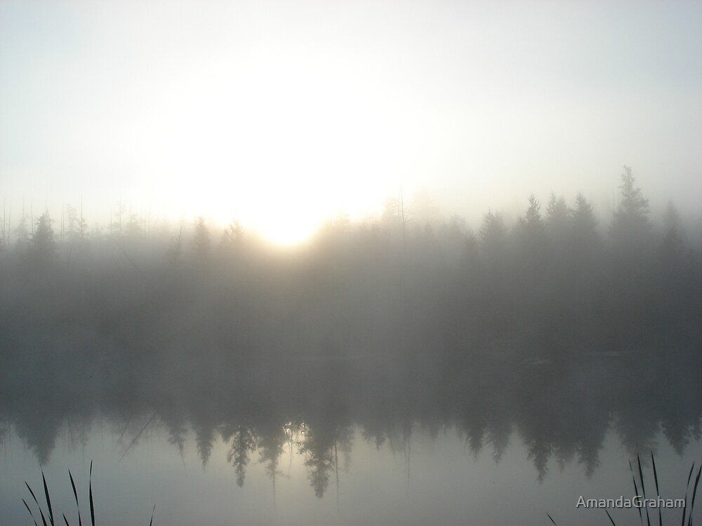 Morning Reflections by AmandaGraham