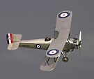 Hawker Tom Tit 1 by SWEEPER