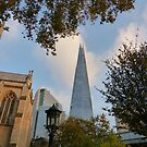 The Shard by looneyatoms