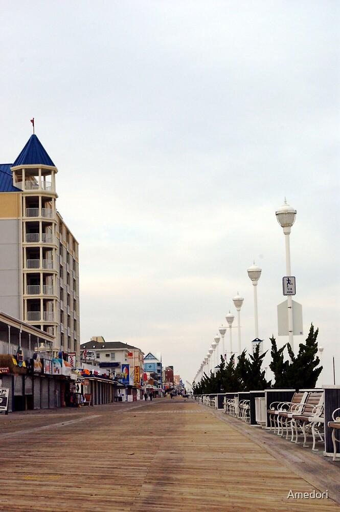 November Boardwalk  by Amedori