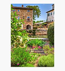 Garden at Bagno Vignoni Photographic Print