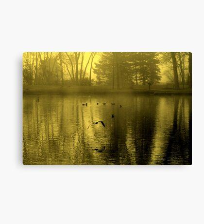 Golden Mist Canvas Print
